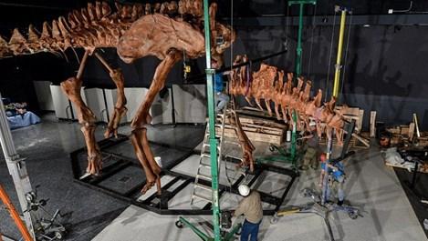Тиранозавър отново стъпи на земята