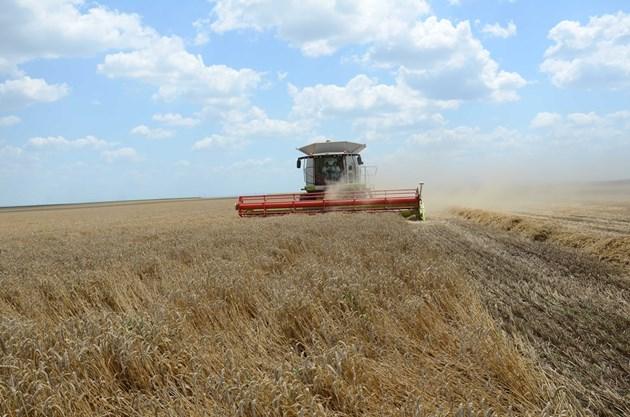 В началото на юли прогнозата е за градушки и повишен риск за разпиляване на узрялата зърнена реколта.