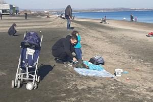 Семейства с малки деца ги изкараха на чист въздух край морето.