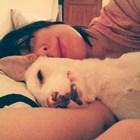 Искра Донова сънува с куче