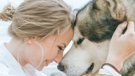 Ако обичаш кучета, прочети това
