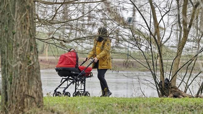Как да изберете перфектната бебешка количка за Вашето дете
