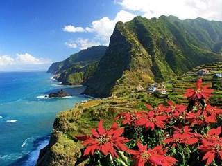 Мадейра – цветната градина на Португалия