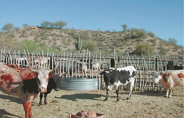 Тази система може да се използва навсякъде, където има ограничена вода