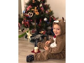 Облечен като еленче, Дими от София се радва на елхата, а Даяна от Варна посреща първата си Коледа