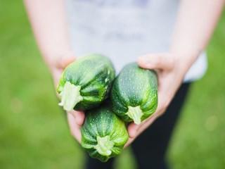 Биохраните - наистина ли има полза от тях?