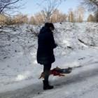 Труп на изкормено куче ужаси Перник