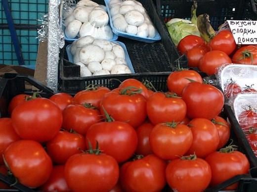 Заради жегата т.г. в плодородната земя около Пловдив не могат да отгледат домати на открито