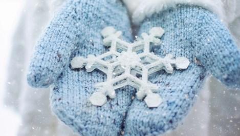 8 интересни факти за снега