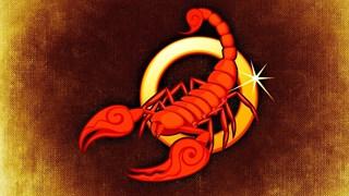 Любовната съвместимост на Скорпиона с останалите зодии