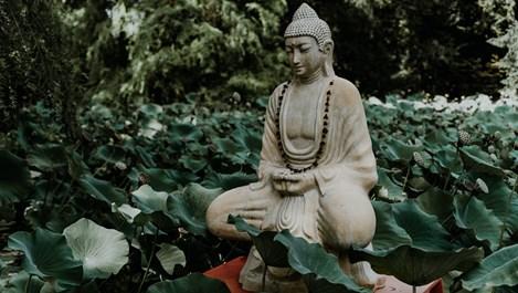 7 основни ключа, които ще ни помогнат да бъдем по-дзен