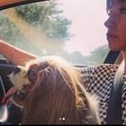 Кака Лара шофира с кучето