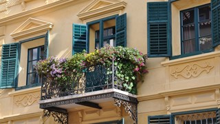 С малко разходи украсяваме балкона с цветя
