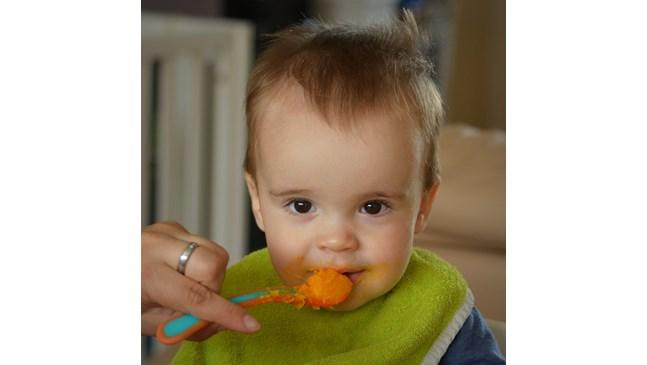Как да познаем качественото бебешко пюре