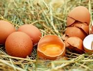 Пак за яйцата - полезни ли са, вредни ли са