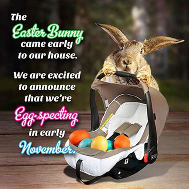 """Картичка с послание за всеки гост, която гласи: """"Великденският заек дойде по-рано у дома. Щастливи сме да ви обявим, че го очакваме да се роди през есента"""""""