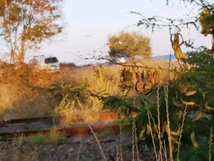 Преследването на автомвобила  е приключило на паркинга на Бургаските солници. Снимка:24 часа