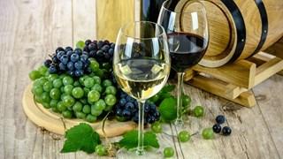 Виното като естествен антибиотик