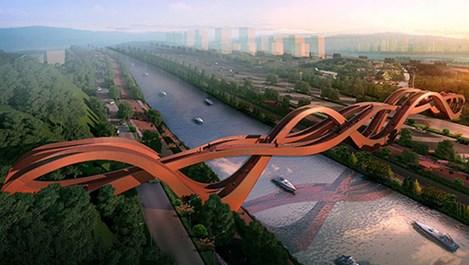 """Холандци """"завързаха"""" мост"""