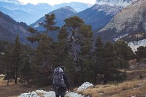Можете ли да оцелеете в дивата природа?
