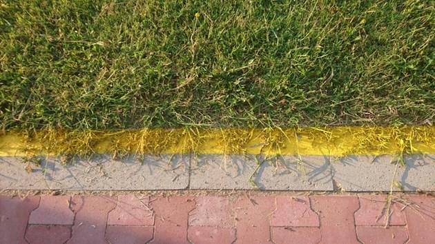 Вело маркировка върху трева