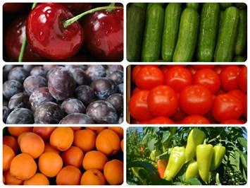 Кои са пазарите за български плодове и зеленчуци?