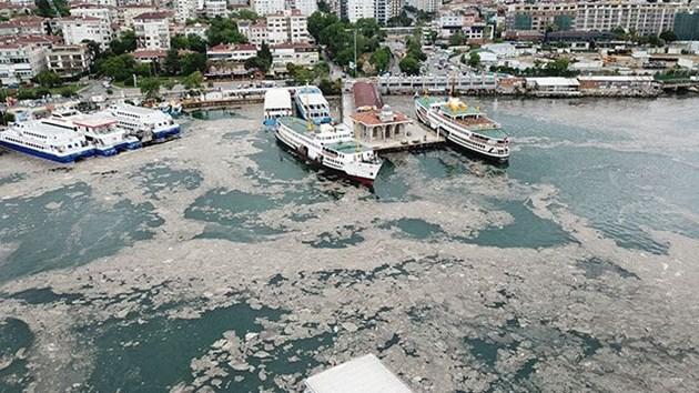 Усилия по разчистването на морската слуз се провеждат в 31 района в окръзите Истанбул, Коджаели, Бурса, Балъкесир, Чанаккале, Ялова и Текирдаг.
