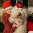 Куче третокласник помага на болни деца