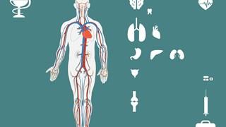 10 признака за автоимунни заболявания