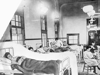 Как Мери пали две епидемии от тиф, а доктор заразява 29 страни с ТОРС