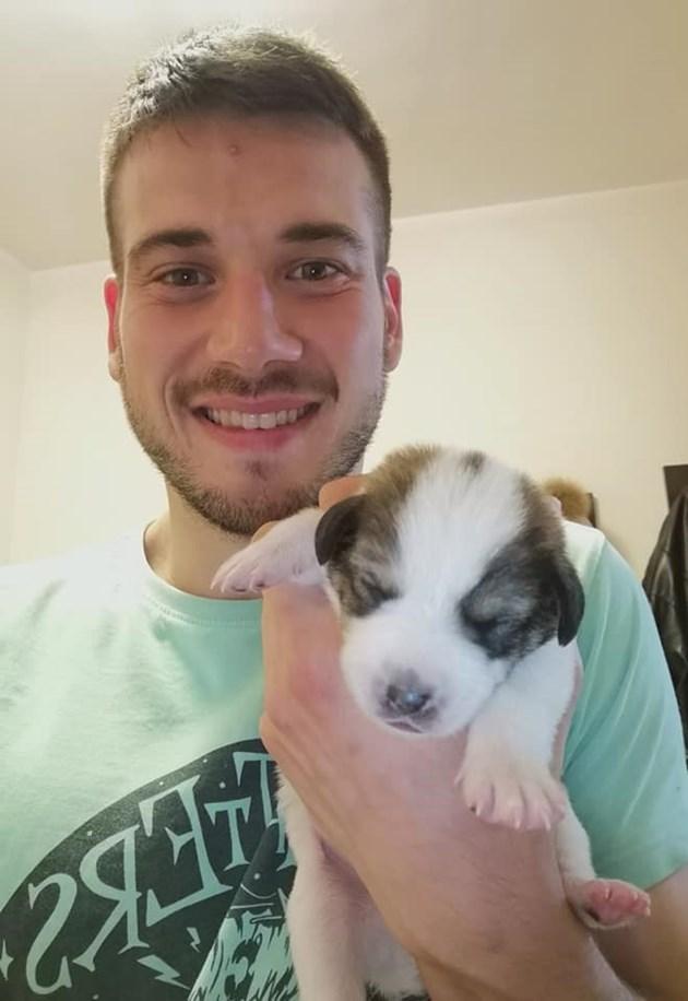 """Топготвач губи дома си, за да спаси кученца  Звездата от """"Хелс Китчън"""" шеф Никола ги открил на боклука"""