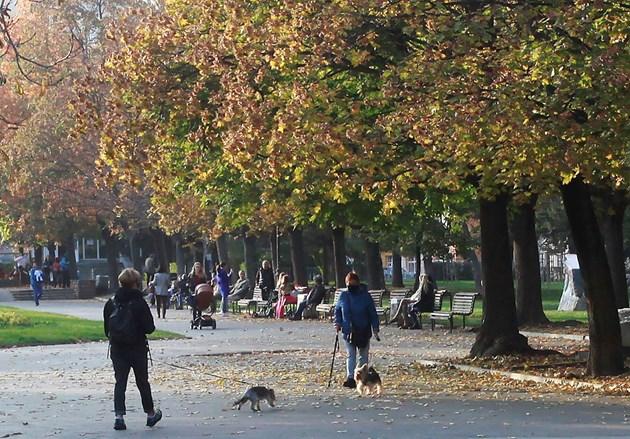 Златна есен прогнозират метеоролозите за края на октомври.  СНИМКА: ВЕЛИСЛАВ НИКОЛОВ