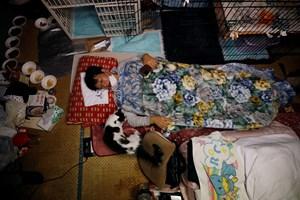 Сакае Като лежи до котката Чарм, която разчита само на неговите грижи след диагнозата котешка левкемия.