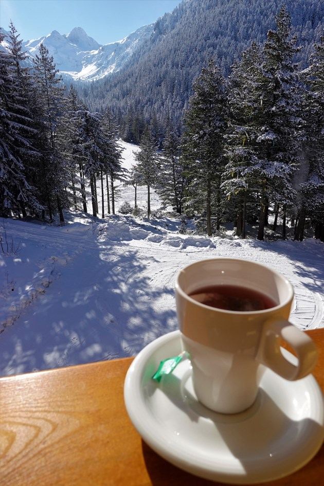 Мальовица посреща гости с повече от атрактивни цени