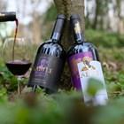 """""""Вила Ямбол"""" организира най-мащабния Празник на виното"""