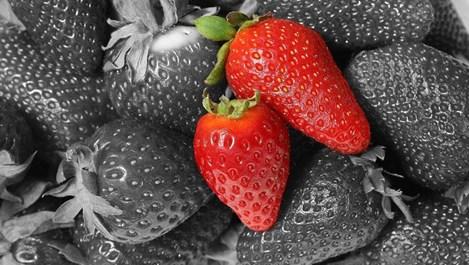 Храни, които се грижат за анемията и кръвното