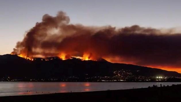 Пожарът в Калифорния достига размерите на Лос Анджелис (Снимки, видео)