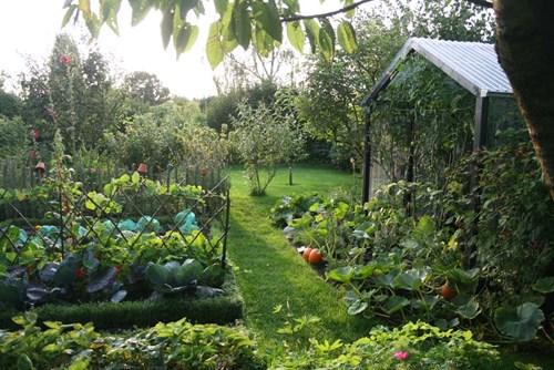 Зеленчуци между овощни дървета