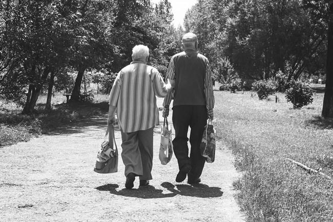 Дълголетието е генетично обосновано, смятат учените. Снимка: Пиксабей