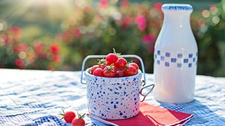 Как да намалим с храни драстично риска от рак