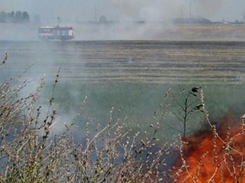 """Електронна поща за сигнали за пожари създаде фонд """"Земеделие"""""""