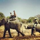 Андрей и жена му в Кения