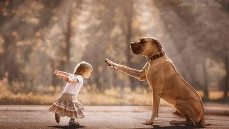 Малките деца и техните големи кучета (галерия)