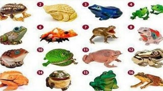 Изберете си жаба, за да откриете своя път към богатството