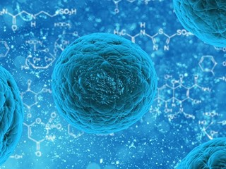 Какво трябва да знаят родителите за коронавируса