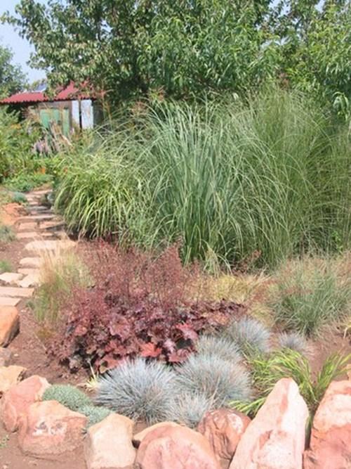 Контрастни съчетания треви