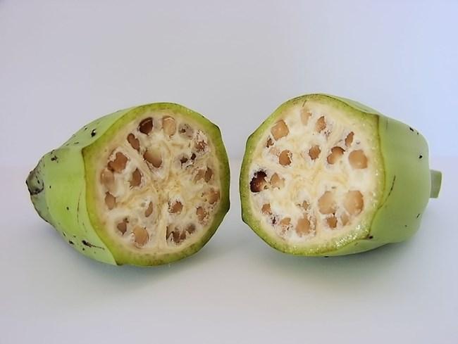 Диворастящ банан с малки семенца вътре