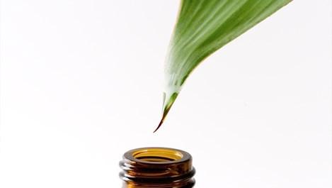 Това масло помага при изгаряния и грип