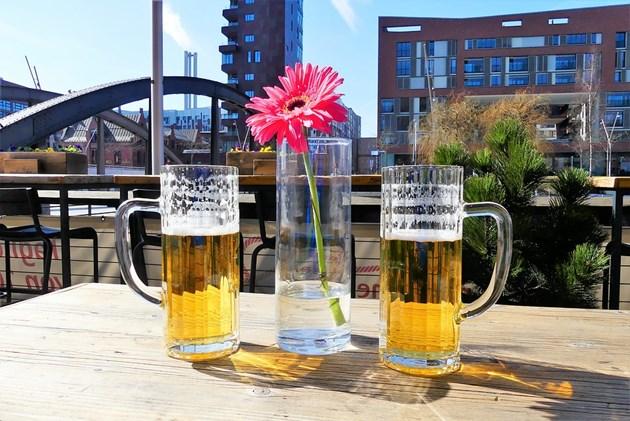 Уникално! За първи път у нас и по света Учени варят бира от цветя