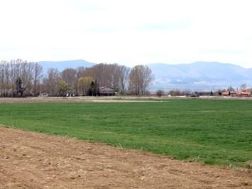 Кабинетът прие промени в Правилника  за прилагане на Закона за земеделските земи
